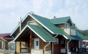 стальная крыша_stalnaya krisha