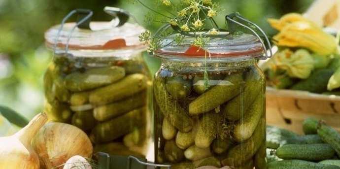 Рецепт домашних соленых огурцов