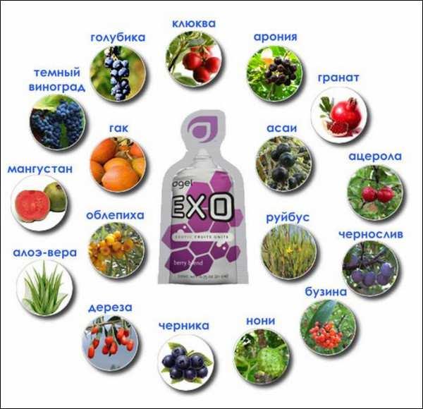 пищевые добавки с антиоксидантами_pischevye dobavki s atioksidantami