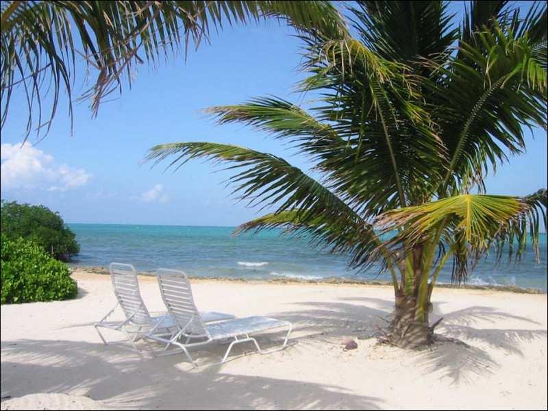 прекрасное место для солнечных ванн_prekrasnoe mesto dlya solnechnyh vann
