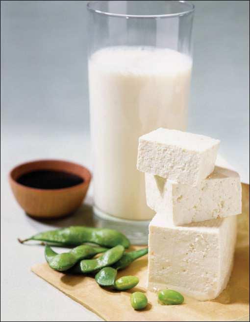 сыр и молоко из сои_syr i moloko iz soi