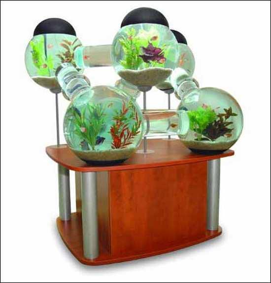 разноуровневый аквариум_raznourovnevyj akvarium