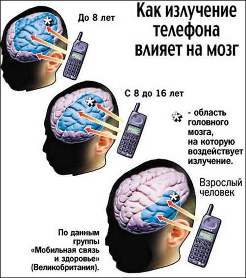 влияние излучения на мозг_vlijanie izluchenija na mozg