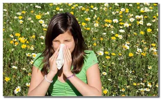 аллергия_на_пыльцу_allergija_na_pylcu
