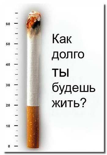 продолжительность_жизни_prodolzhitelnost_zhizni