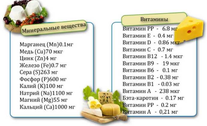 Польза сыра для здоровья