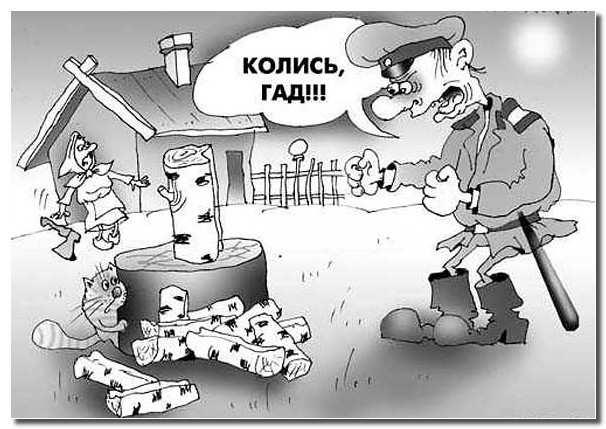 заготовка_дров_zagotovka_drov