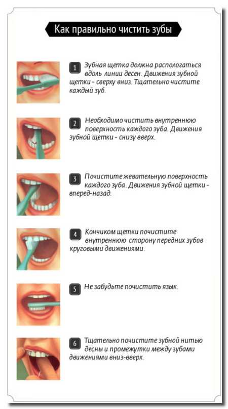 правильная_чистка_зубов_pravilnaja_chistka_zubov
