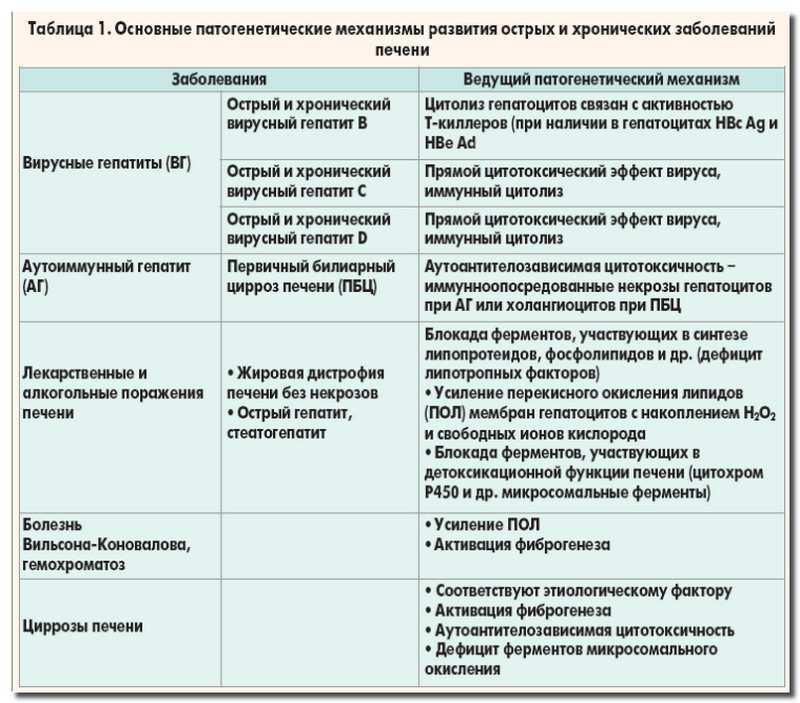 заболевания_печени_zabolevanija_pecheni