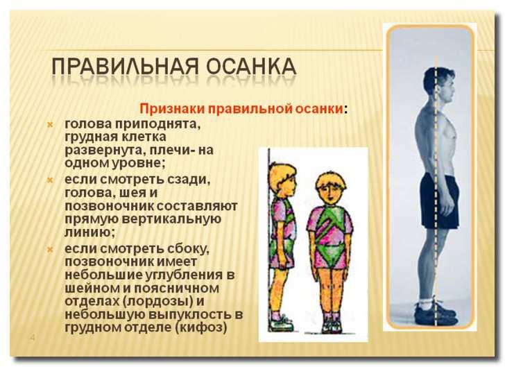 правильная_осанка_pravilnaja_osanka