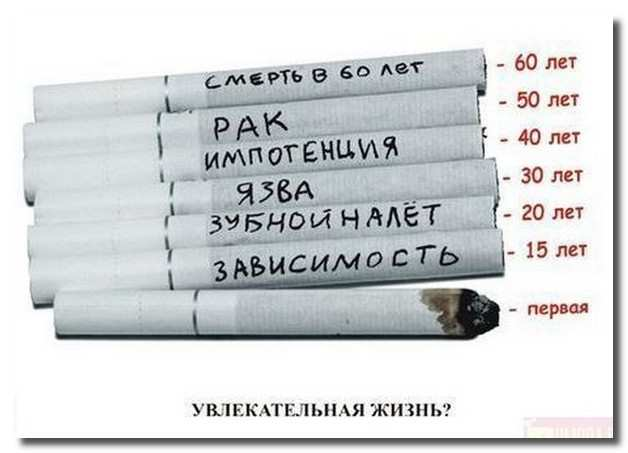 жизнь_курильщика_zhizn_kurilwika