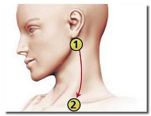 акупунктура-akupunktura