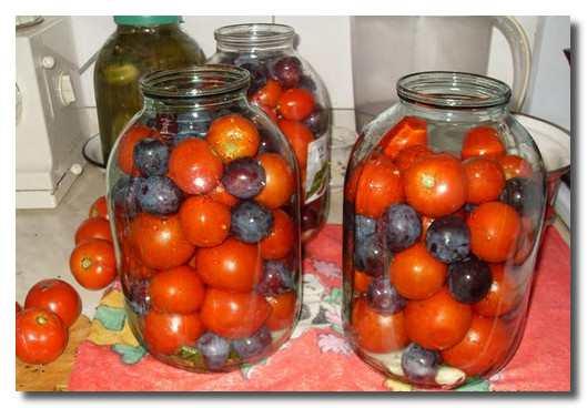 помидоры-со-сливами-pomidory-so-slivami